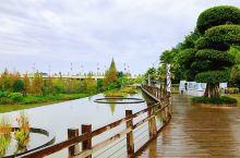 #为祖国庆生#漫步遂宁观音湖湿地公园