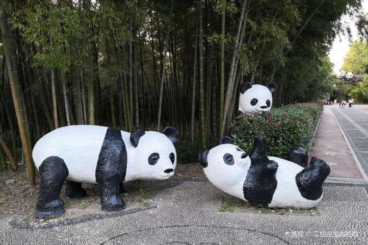 Anji Bamboo Expo Park2