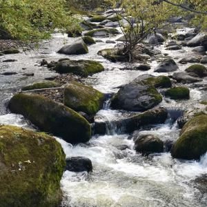汪清兰家大峡谷国家森林公园旅游景点攻略图