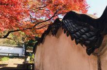 故乡的秋色