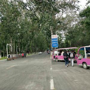 南开大学旅游景点攻略图