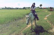 骑着马走进暹粒村落里体验田园风光