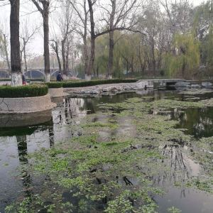 眼明泉公园旅游景点攻略图