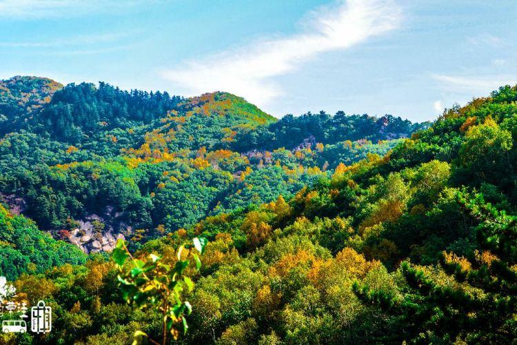 바이차오와 국립삼림공원4