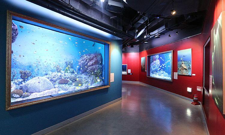 COEX水族館1