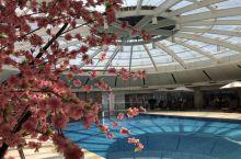 一场金陵梦,走进南京索菲特银河大酒店
