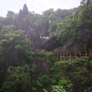 玉石林风景区旅游景点攻略图