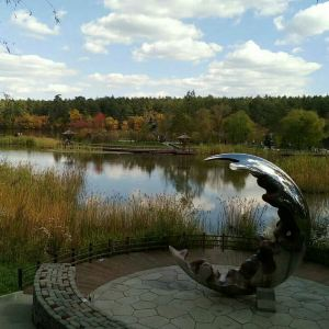 长白山美人松雕塑公园旅游景点攻略图
