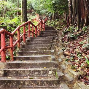 七仙井旅游景点攻略图