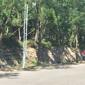 凤凰岭自然风景区旅游景点攻略图