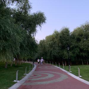 莫子山公园旅游景点攻略图