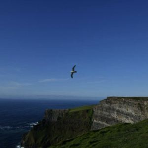 莫赫悬崖旅游景点攻略图