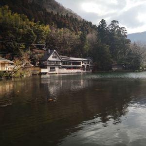 金鳞湖旅游景点攻略图