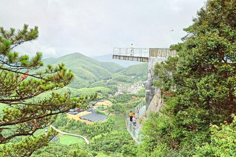Meihua Mountain (China Tiger Park)