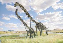 内蒙盐湖风景区+赛汉锡丽沙漠+二连浩特国门景区+白垩纪恐龙地质公园+古茶路伊林驿站二日游