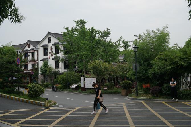 两日杭州青芝坞的静谧时光 – 杭州游记攻略插图30