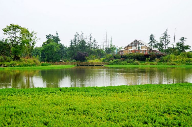 崇州市有多少人口_安逸四川 冬游天府 ,崇州有你最爱的 成都冬味儿