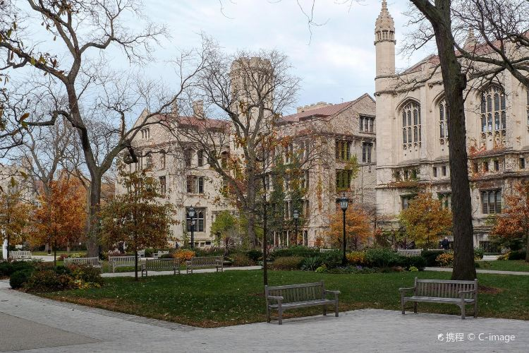 The University of Chicago1