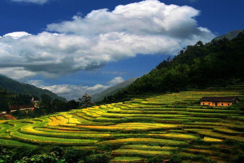Gaozhou
