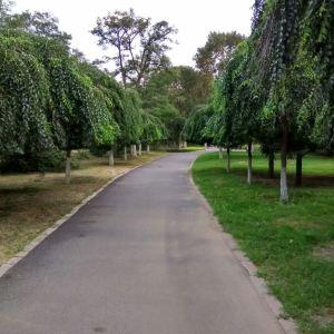 阜新人民公园旅游景点攻略图