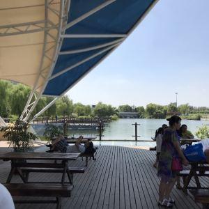 月牙岛生态公园中心广场旅游景点攻略图