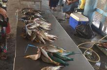 南迪 劳托卡海鲜市场