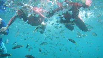 环滩岛潜水