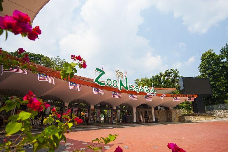 馬來西亞國家動物園4