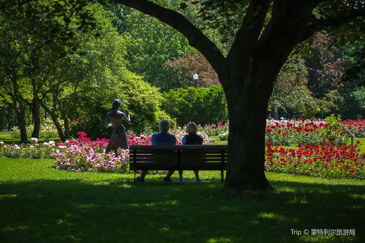 蒙特利爾植物園4