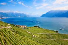 探访世界遗产|藏匿在瑞士山水间的一抹秀美风光,抹杀菲林无数!