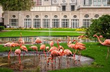 打卡系列 欧洲有这么多经典的动物园,总有一款适合你或你的娃~