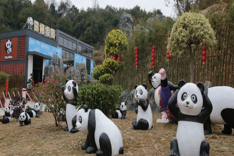 Quanzhou Wildlife Zoo (Quanzhou Wildlife World)4