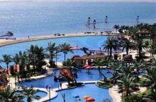 1.4万㎡童话城堡+3.5km海岸线,华东这家一房难求的亲子酒店,¥699限时三天开抢!