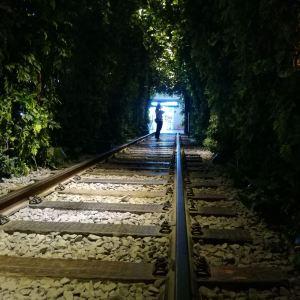 绿野仙踪旅游景点攻略图