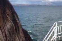 天空岛Armadale 乘船过海到 Mallaig