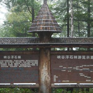 峡谷浮石林旅游景点攻略图