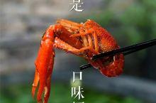 50万长沙人最爱的七家龙虾店,承包你一整个夏天