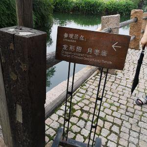 龙形田旅游景点攻略图