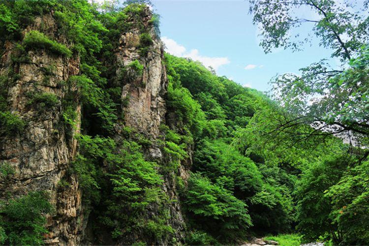 Yulongxi Primeval Forest Park