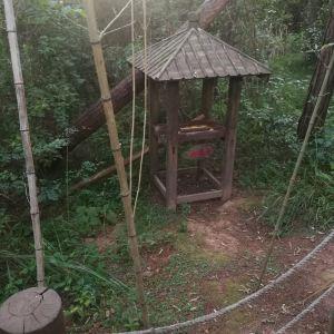 龙岩冠豸秘谷佰翔度假酒店(餐饮部)旅游景点攻略图