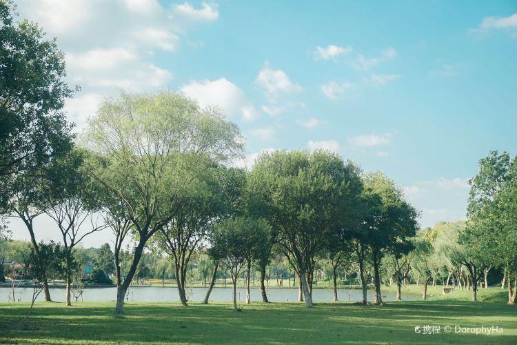 Longbeishan Forest Park2
