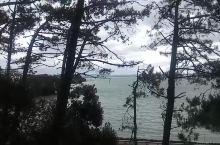 从Point Erin Pool俯瞰大海