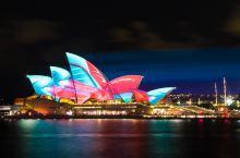 打卡  Vivid Sydney 悉尼灯光节
