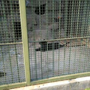 青岛动物园旅游景点攻略图