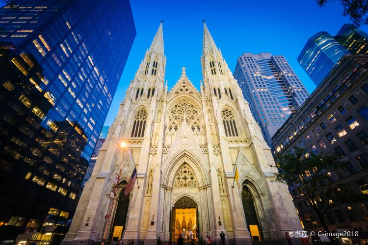 St. Patrick's Cathedral4