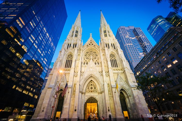 St. Patrick's Cathedral3