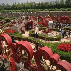 杭州烂苹果乐园旅游景点攻略图