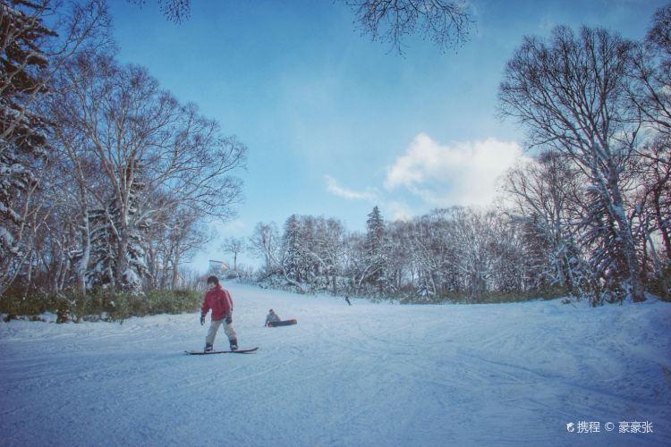札幌國際滑雪場4
