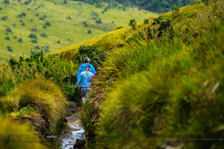 Horton Plains National Park2