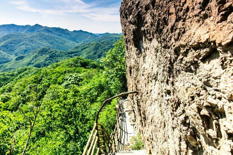 Tiannvshan Forest Park2